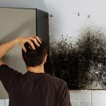 mold removal kansas city, mold remediation kansas city, mold cleanup kansas city
